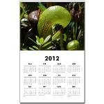 Darlingtonia calendar
